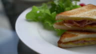 ham and cheese sandwich with salad video