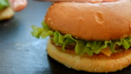 Hamburger with salad and french fries video