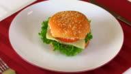 Hamburger Zoom In HD video
