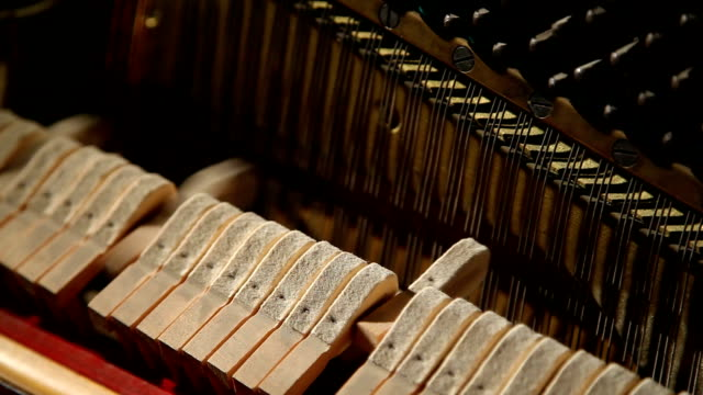 hammers inside a piano video