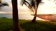 Hammock and Palm Trees at Sunset. Backyard Oceanfront Real Estate. Maui video