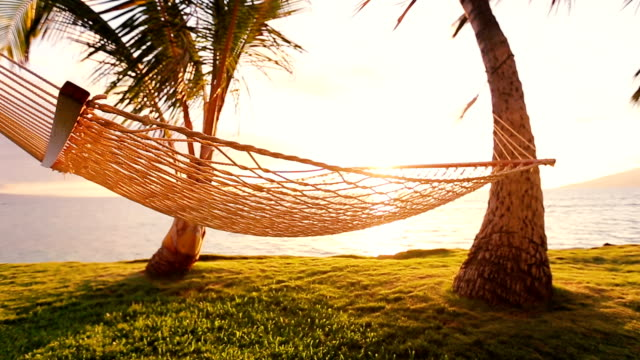 Hammock and Palm Trees at Sunset Beautiful Sun Flare video