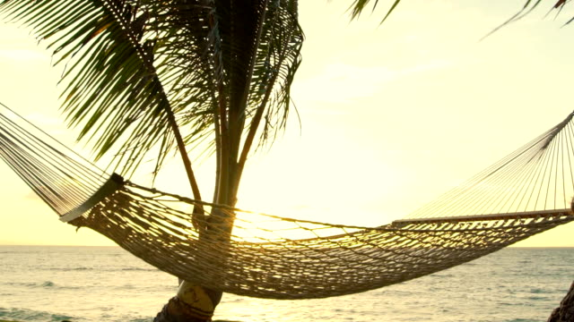 Hammock and Palm Trees at Sunset SLOW MOTION. Luxury Vacation Relaxation Lifestyle. Hammock Swinging on the Wind Between Two Palm Trees. Backyard Oceanfront Real Estate. Maui video