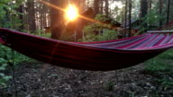 hammock hanging on a tree at sunset video