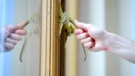 Hand checking vintage golden window handles video