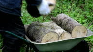 hand firewood barrow video
