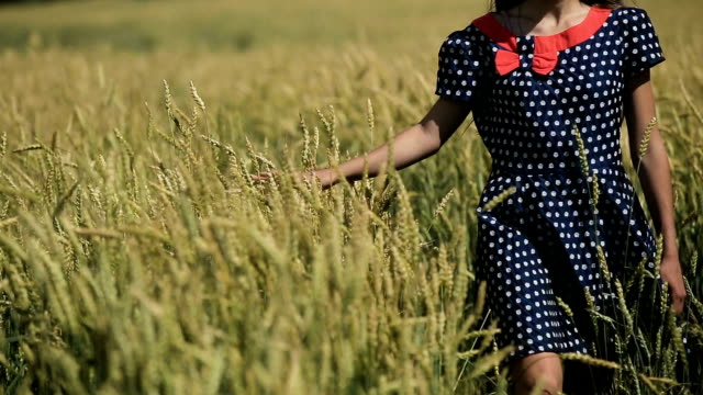 Hand of girl in the wheat field video