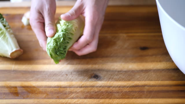 hand picking cos lettuce video