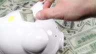 Hand pulling out money from piggy bank video