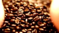 Hand sifting through coffee beans. Macro lens. video