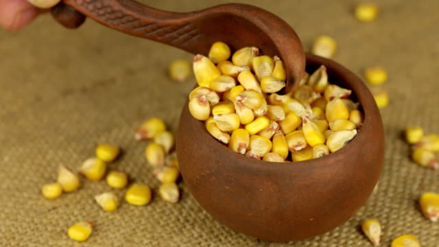 Hand with a spoon to pour the corn grain from a rotating clay pot video