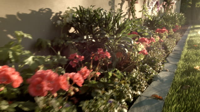 Handheld Shot Panning by Flowers in a Beautiful Yard video