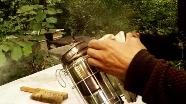Hands Fan With Bellows Smoke in Bee Smoker Close up video