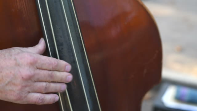 hands of elderly musicians play the double bass. video