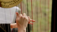 Hands of harpist playing harp. Close-up video