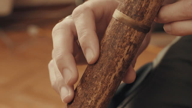Hands of musician plays the flute video
