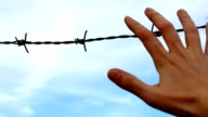 Hands on barbed wire video