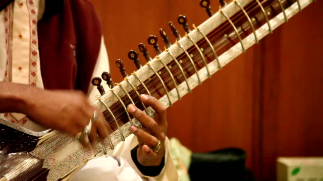 Hands Playing Sitar: India video