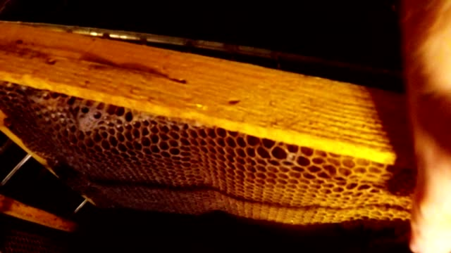 Hands Put Frame For Honeycombs in Rack in Honey Extractor and Spin it video