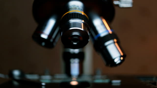 Hands scientist adjusts the eyepieces of the microscope. video
