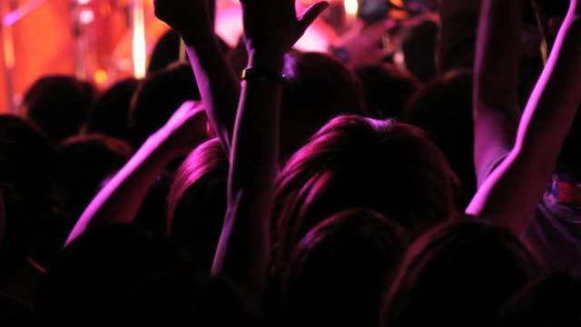 Hands Up. Rock concert crowd. video