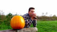 Handsome young man lean on log and play harmonica, orange pumpkin close to him video