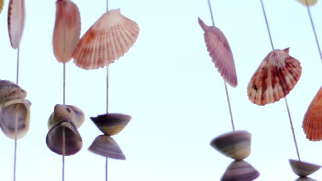 Hanging decorative shells video