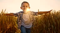 SLO MO Happy boy running in field with arms outstretched video