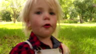 Happy child pets a labrador retriever dog at park video
