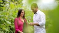 Happy couple drinking white wine in vineyard video