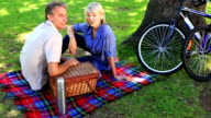 Happy couple having a picnic in the park video