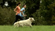 HD: Happy Couple Running With Their Dog video