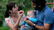 Happy Family Apple Picking in Orchard video