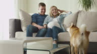 Happy family are relaxing on a sofa at home with pet dog. video