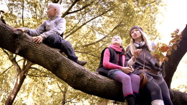 Happy family having fun in autumn park video
