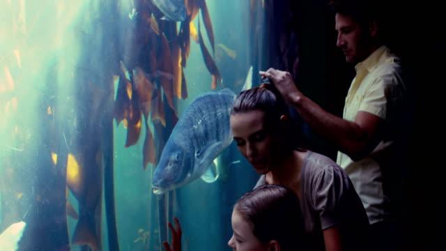 Happy family looking at fish tank video