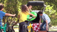 Happy family of four unloading car trunk video