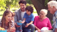 Happy family on a picnic in the park video