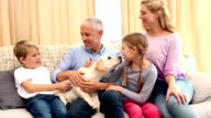 Happy family petting labrador on couch video