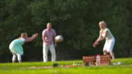 HD DOLLY: Happy Family Tossing A Ball In The Park video