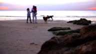 Happy family walking on the beach video