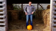 Happy farmer stand with orange pumpkin, take it from the floor and go away video