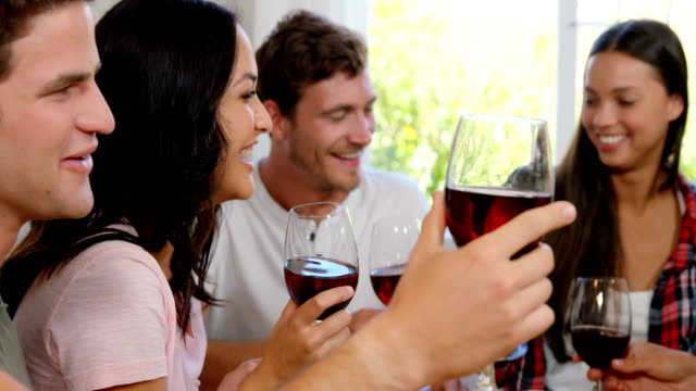 Happy friends cheering with red wine video