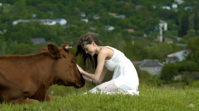 Happy Girl Strokes A Cow At Summer Day video