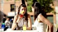 HD: Happy Girl toasting at ba video