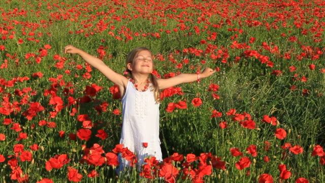 Happy girl with poppy flowers video