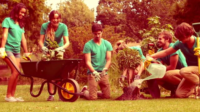 Happy group of volunteers gardening in the park video