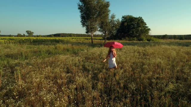 Happy little girl walks with red umbrella on the meadow video