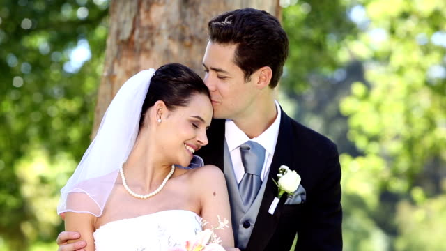 Happy newlyweds sitting in the park beside a tree video