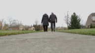 Happy Retirement Loving couple holding hands Exercise walking Person Body video